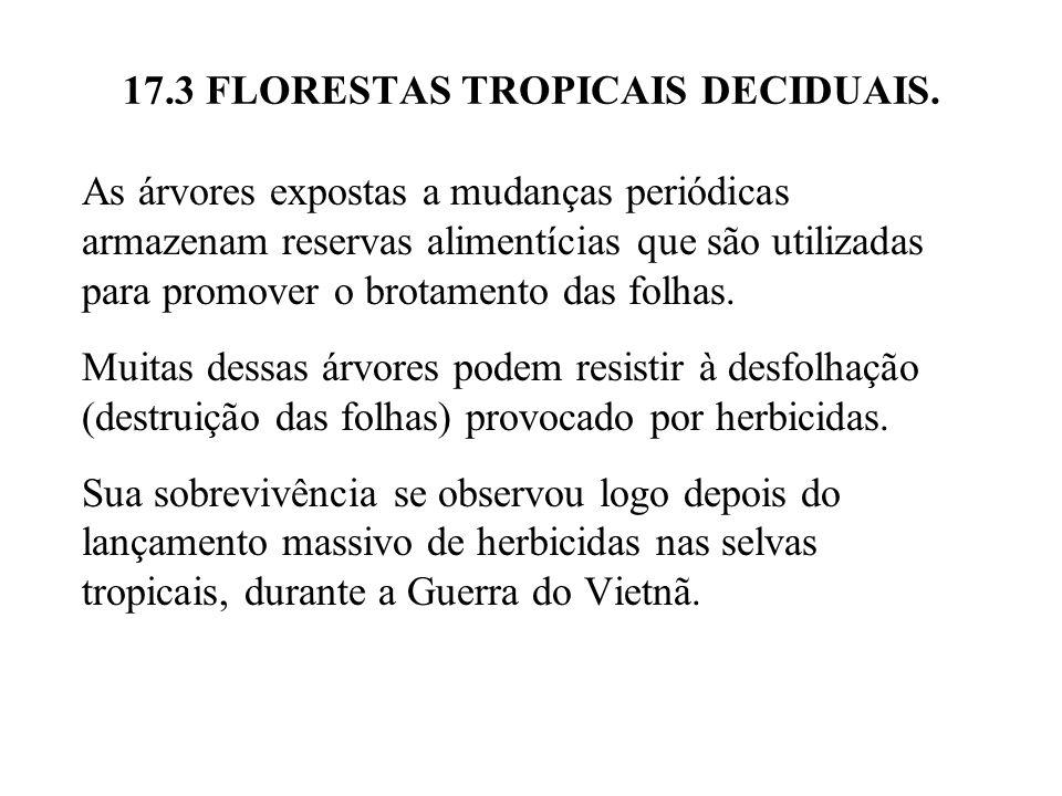 17.3 FLORESTAS TROPICAIS DECIDUAIS. As árvores expostas a mudanças periódicas armazenam reservas alimentícias que são utilizadas para promover o brota