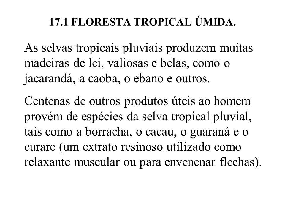 17.1 FLORESTA TROPICAL ÚMIDA. As selvas tropicais pluviais produzem muitas madeiras de lei, valiosas e belas, como o jacarandá, a caoba, o ebano e out