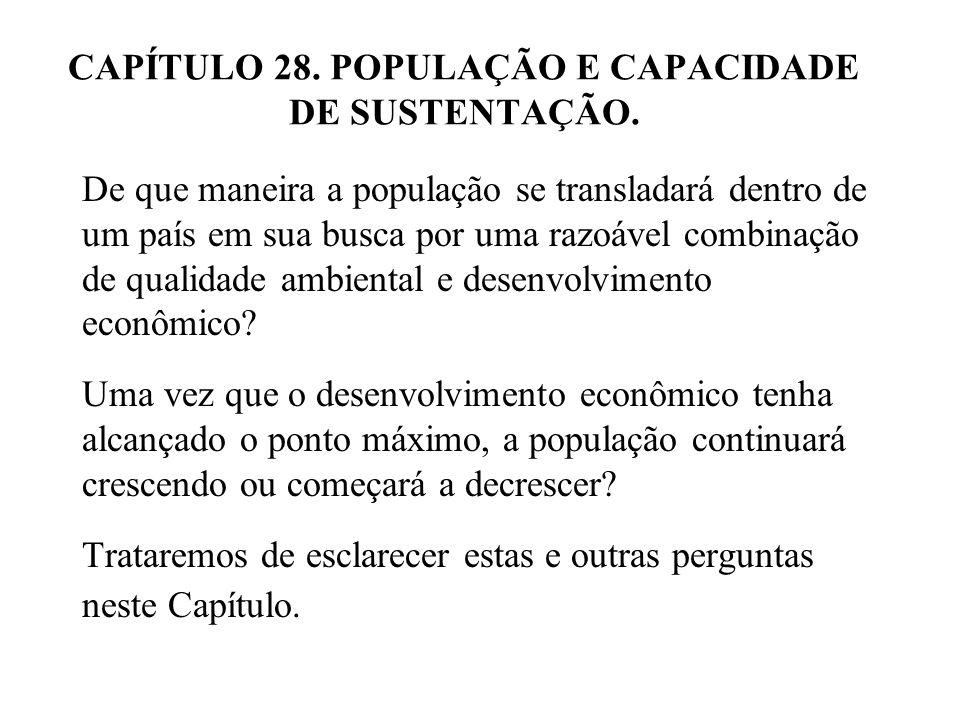 28.1 PADRÃO DE VIDA.