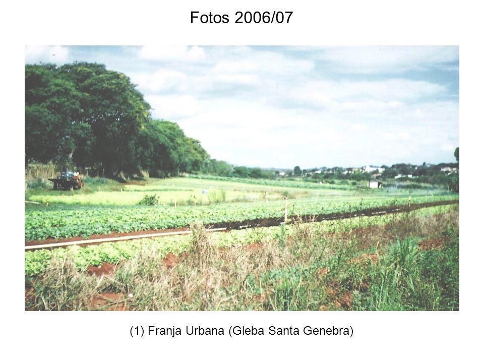 (1) Franja Urbana (Gleba Santa Genebra) Fotos 2006/07