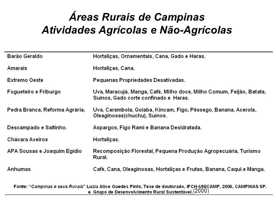 Áreas Rurais de Campinas Atividades Agrícolas e Não-Agrícolas (2000)