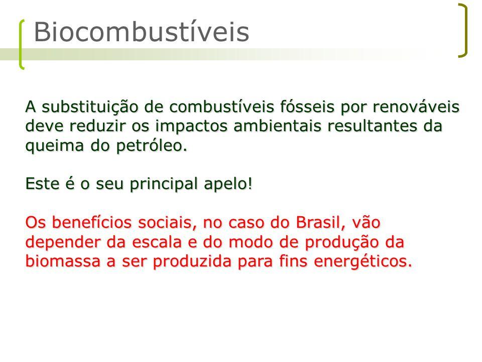 No afã de equilibrar as contas externas, o governo brasileiro começou a financiar plantas de biodiesel em um ritmo afoito.