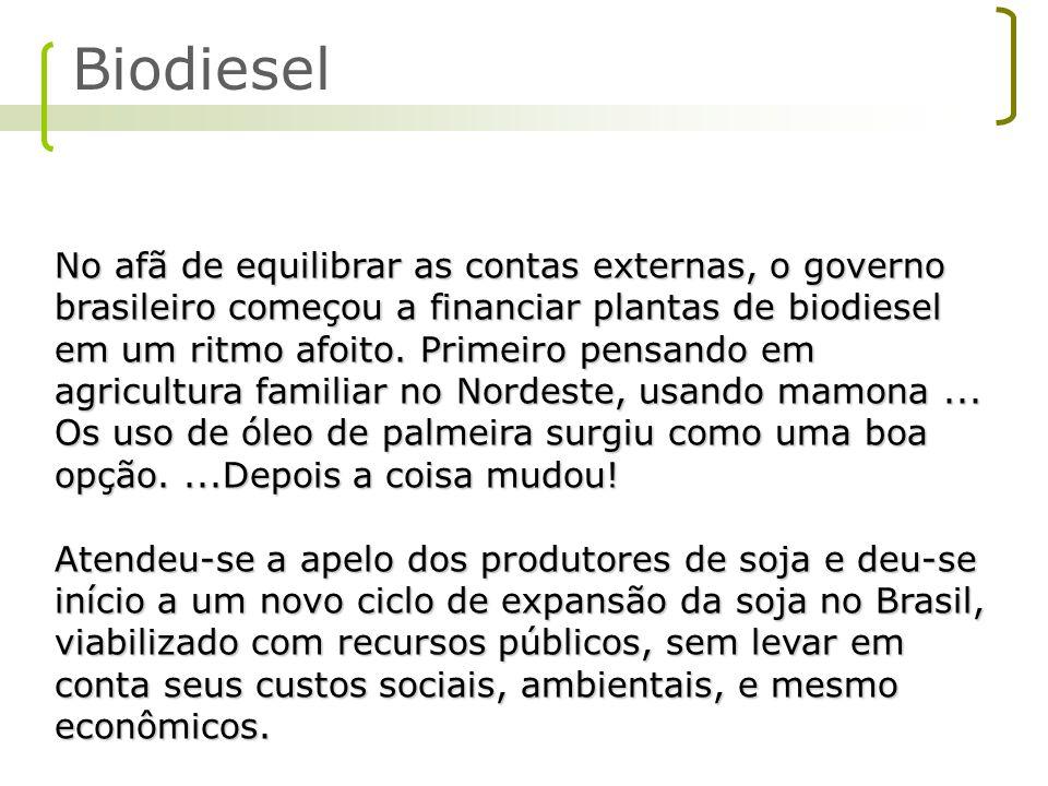 No afã de equilibrar as contas externas, o governo brasileiro começou a financiar plantas de biodiesel em um ritmo afoito. Primeiro pensando em agricu