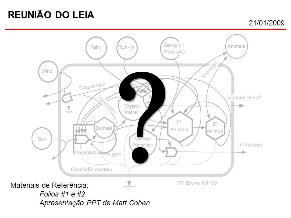 REUNIÃO DO LEIA 21/01/2009 Materiais de Referência: Folios #1 e #2 Apresentação PPT de Matt Cohen ? ?