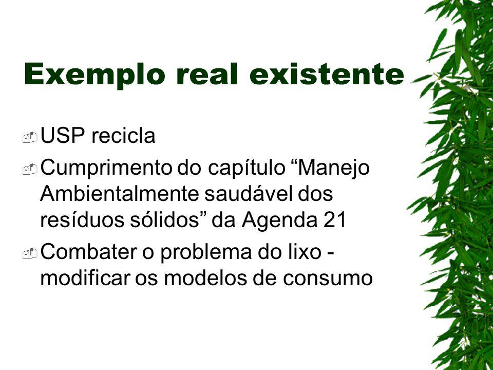 """Exemplo real existente  USP recicla  Cumprimento do capítulo """"Manejo Ambientalmente saudável dos resíduos sólidos"""" da Agenda 21  Combater o problem"""