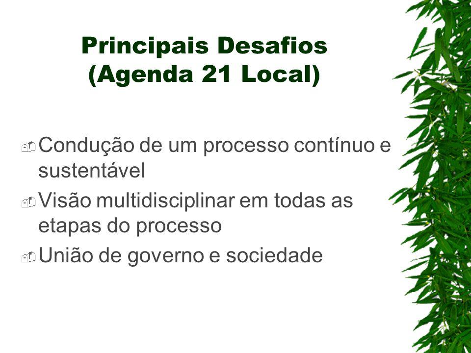 Principais Desafios (Agenda 21 Local)  Condução de um processo contínuo e sustentável  Visão multidisciplinar em todas as etapas do processo  União