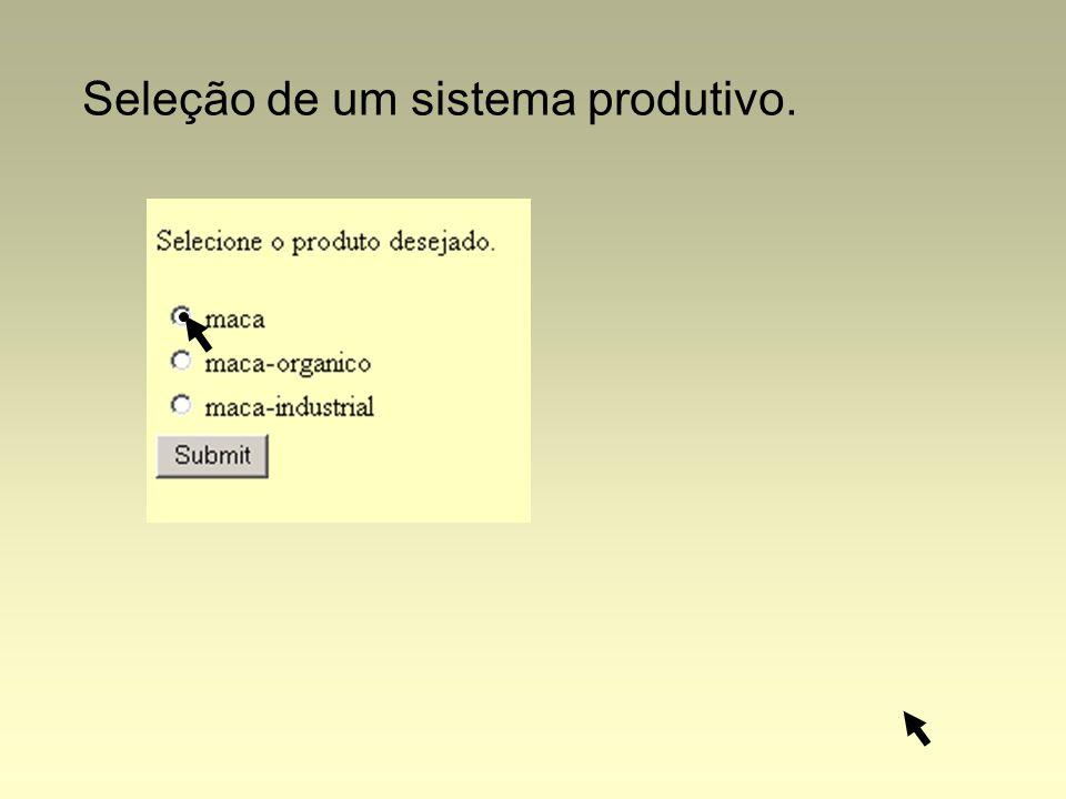 Seleção de um sistema produtivo.