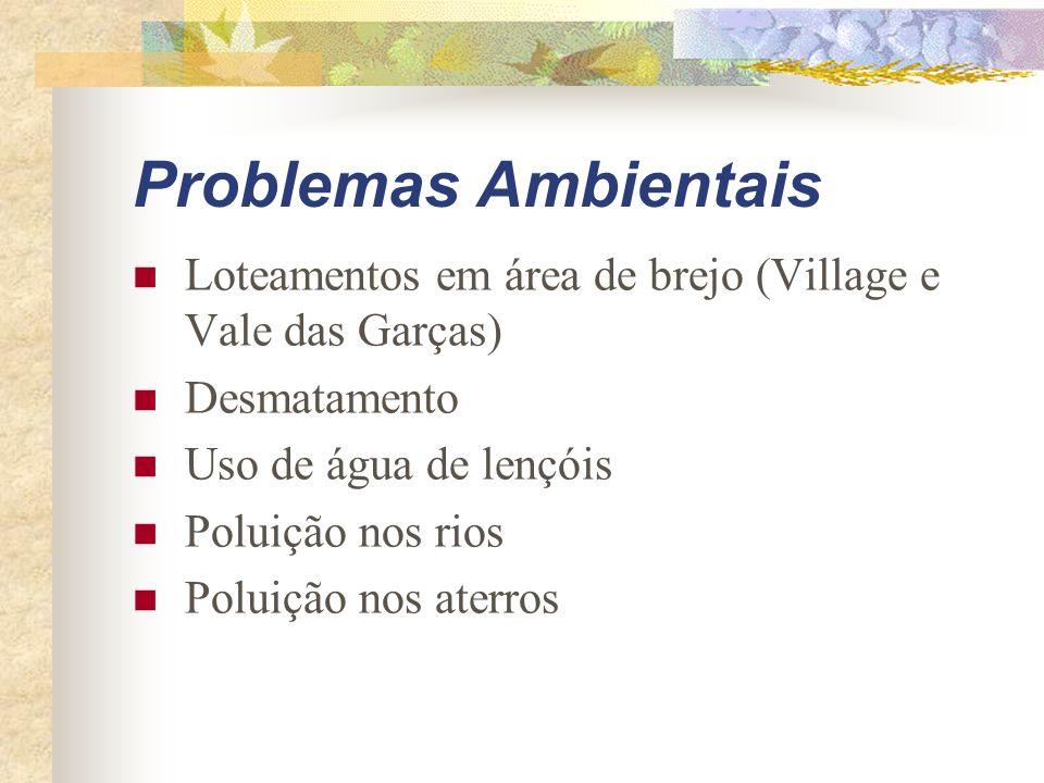 Problemas Ambientais Loteamentos em área de brejo (Village e Vale das Garças) Desmatamento Uso de água de lençóis Poluição nos rios Poluição nos aterr