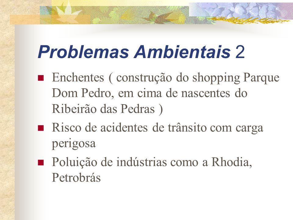 Problemas Ambientais 2 Enchentes ( construção do shopping Parque Dom Pedro, em cima de nascentes do Ribeirão das Pedras ) Risco de acidentes de trânsito com carga perigosa Poluição de indústrias como a Rhodia, Petrobrás