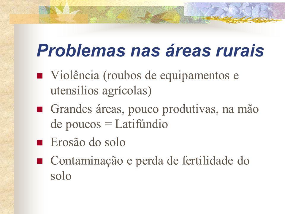 Problemas nas áreas rurais Violência (roubos de equipamentos e utensílios agrícolas) Grandes áreas, pouco produtivas, na mão de poucos = Latifúndio Erosão do solo Contaminação e perda de fertilidade do solo