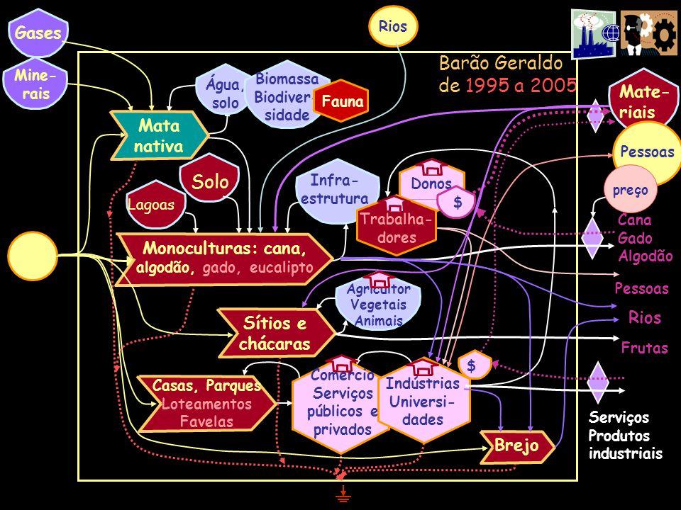 Barão Geraldo de 1995 a 2005 Água, solo Solo Mine- rais Biomassa Biodiver- sidade Mate- riais Fauna Infra- estrutura Donos Trabalha- dores Gases Monoc