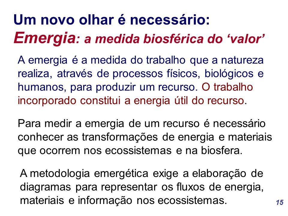 15 Um novo olhar é necessário: Emergia : a medida biosférica do 'valor' A emergia é a medida do trabalho que a natureza realiza, através de processos físicos, biológicos e humanos, para produzir um recurso.