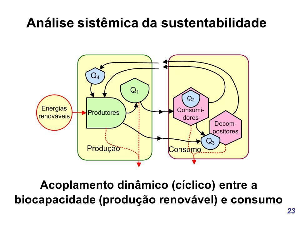 23 Análise sistêmica da sustentabilidade Acoplamento dinâmico (cíclico) entre a biocapacidade (produção renovável) e consumo
