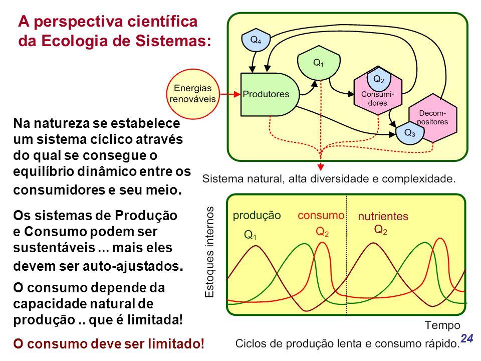 24 A perspectiva científica da Ecologia de Sistemas: Na natureza se estabelece um sistema cíclico através do qual se consegue o equilíbrio dinâmico entre os consumidores e seu meio.