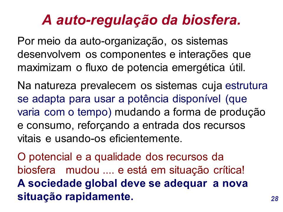 28 A auto-regulação da biosfera.