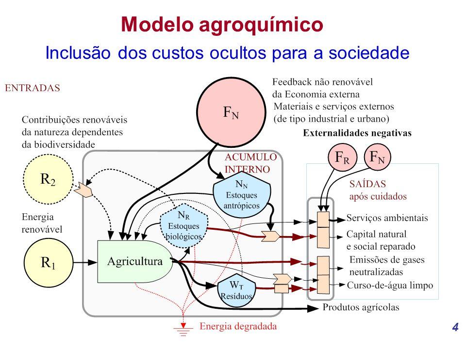 4 Modelo agroquímico Inclusão dos custos ocultos para a sociedade