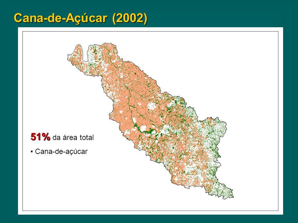 Cana-de-Açúcar (2002) 51% da área total Cana-de-açúcar Cana-de-açúcar