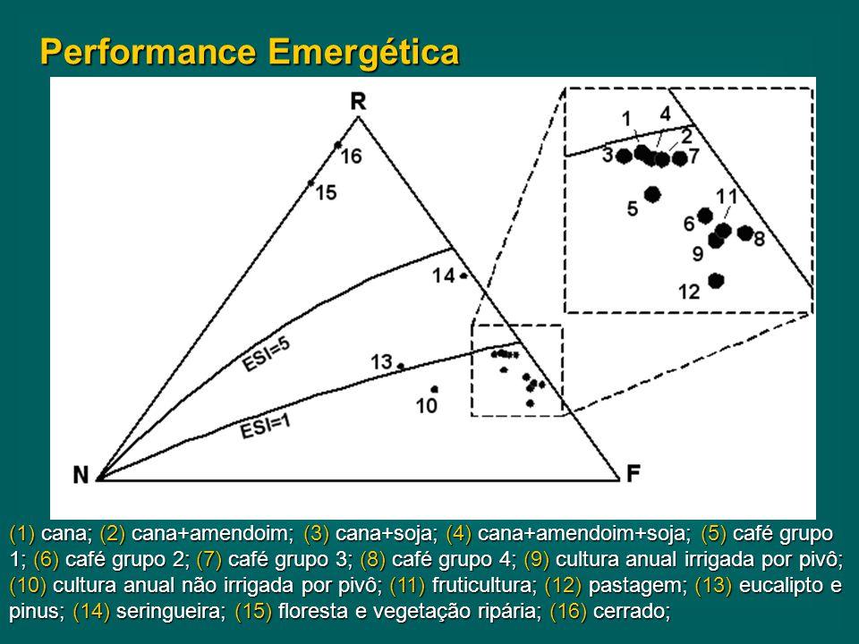 Performance Emergética (1) cana; (2) cana+amendoim; (3) cana+soja; (4) cana+amendoim+soja; (5) café grupo 1; (6) café grupo 2; (7) café grupo 3; (8) café grupo 4; (9) cultura anual irrigada por pivô; (10) cultura anual não irrigada por pivô; (11) fruticultura; (12) pastagem; (13) eucalipto e pinus; (14) seringueira; (15) floresta e vegetação ripária; (16) cerrado;