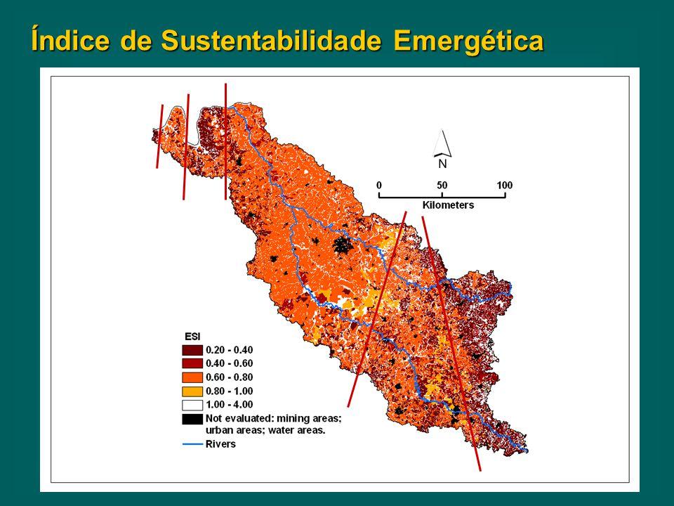Índice de Sustentabilidade Emergética