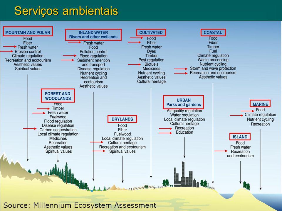 Source: Millennium Ecosystem Assessment Serviços ambientais Serviços ambientais