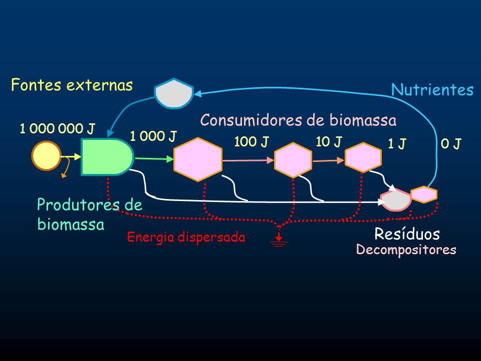 Consumidores de biomassa Energia dispersada Fontes externas Produtores de biomassa Resíduos Nutrientes Decompositores 1 000 J 1 000 000 J 100 J10 J 1