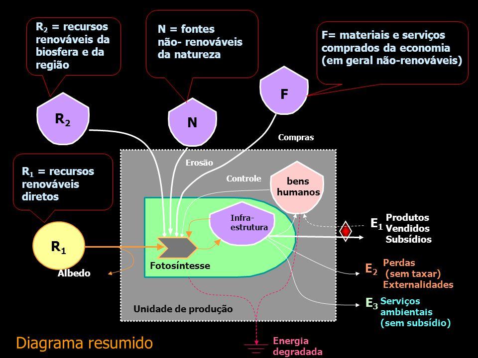 R1R1 Fotosíntesse Infra- estrutura R2R2 N F bens humanos Unidade de produção Energia degradada Produtos Vendidos Subsídios E1E1 Perdas (sem taxar) Ext