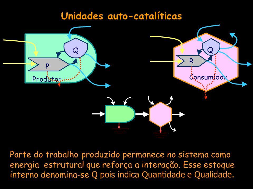 Unidades auto-catalíticas P Q Produtor Consumidor R Q Parte do trabalho produzido permanece no sistema como energia estrutural que reforça a interação.