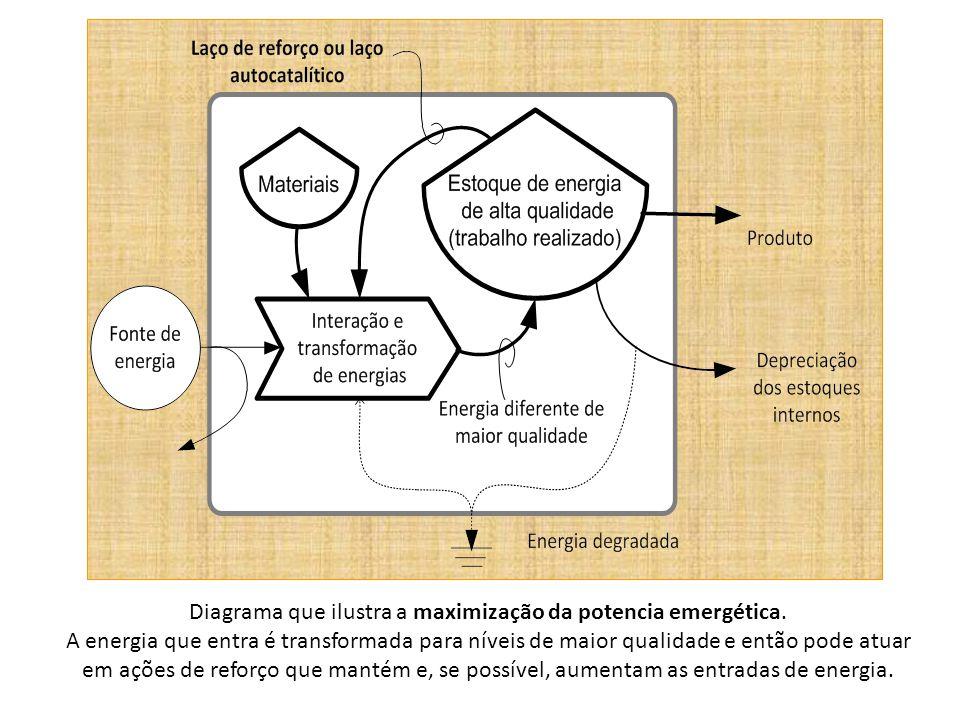 Diagrama que ilustra a maximização da potencia emergética.