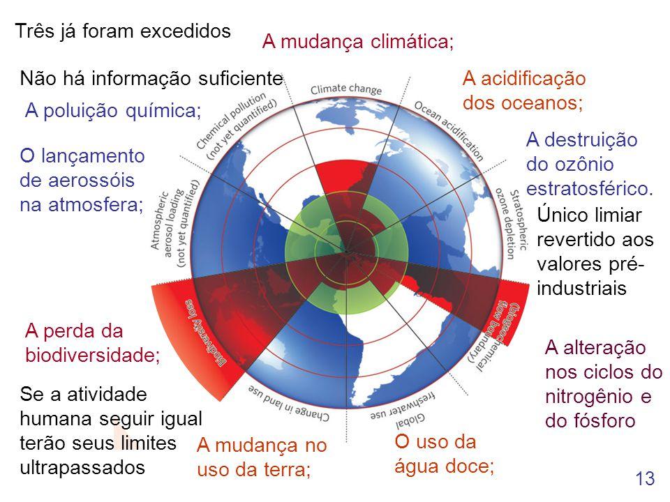 13 A poluição química; O lançamento de aerossóis na atmosfera; A perda da biodiversidade; A acidificação dos oceanos; A destruição do ozônio estratosf