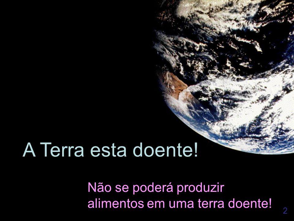 2 A Terra esta doente! Não se poderá produzir alimentos em uma terra doente!