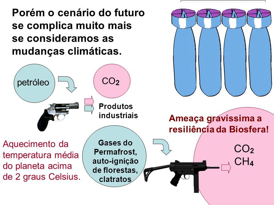 Porém o cenário do futuro se complica muito mais se consideramos as mudanças climáticas. petróleo CO 2 CH 4 Produtos industriais CO 2 Aquecimento da t
