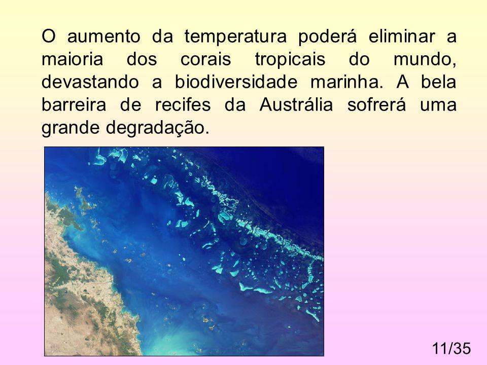 11/35. O aumento da temperatura poderá eliminar a maioria dos corais tropicais do mundo, devastando a biodiversidade marinha. A bela barreira de recif