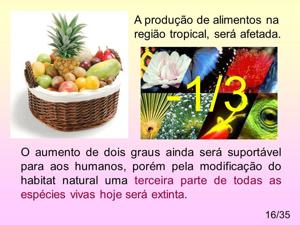 16/35 A produção de alimentos na região tropical, será afetada. O aumento de dois graus ainda será suportável para aos humanos, porém pela modificação