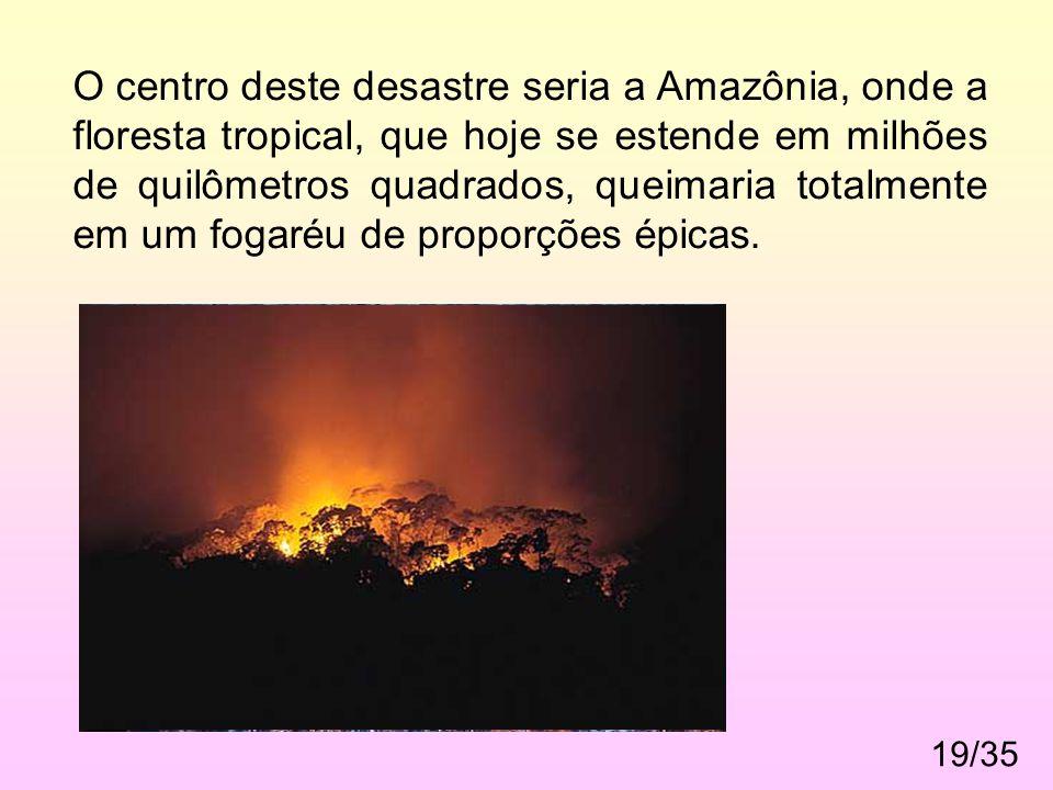 19/35. O centro deste desastre seria a Amazônia, onde a floresta tropical, que hoje se estende em milhões de quilômetros quadrados, queimaria totalmen