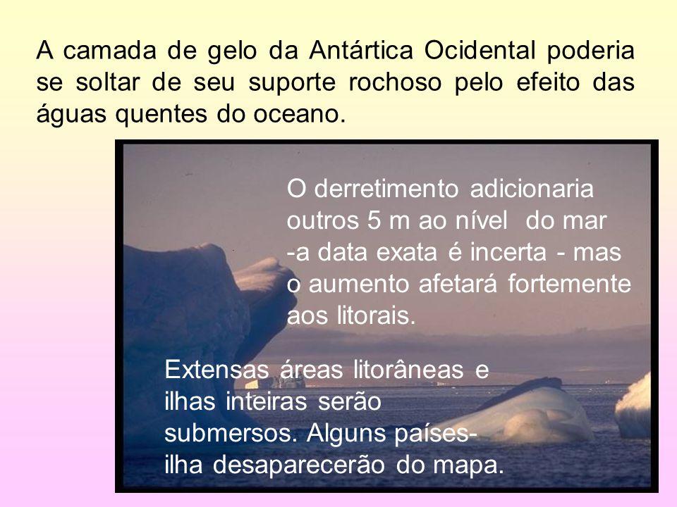 27/35 A camada de gelo da Antártica Ocidental poderia se soltar de seu suporte rochoso pelo efeito das águas quentes do oceano.. O derretimento adicio