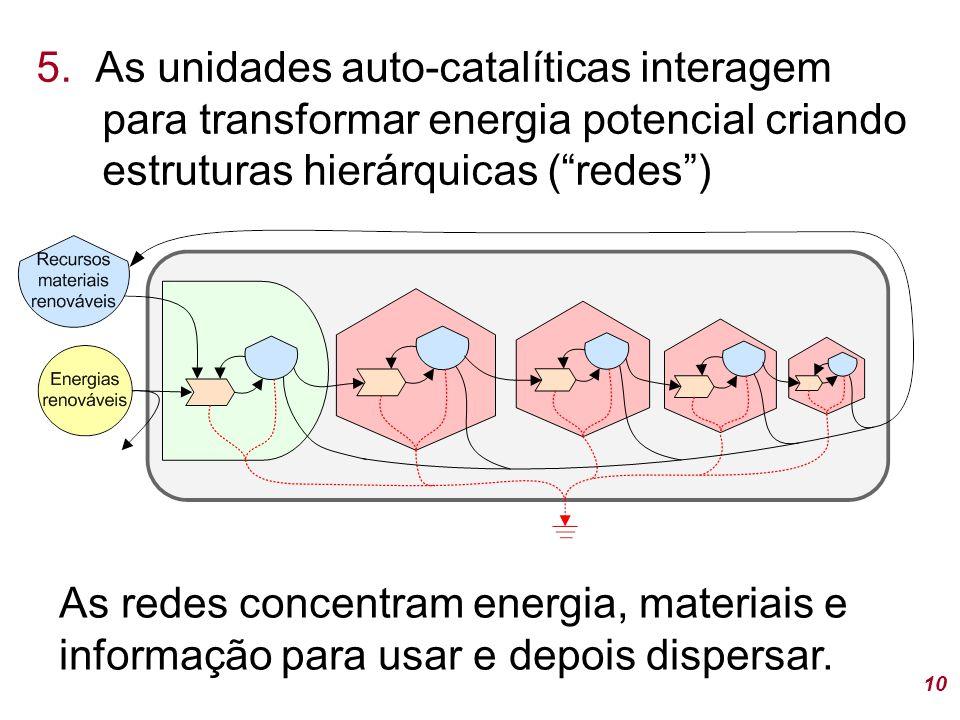 """5. As unidades auto-catalíticas interagem para transformar energia potencial criando estruturas hierárquicas (""""redes"""") 10 As redes concentram energia,"""