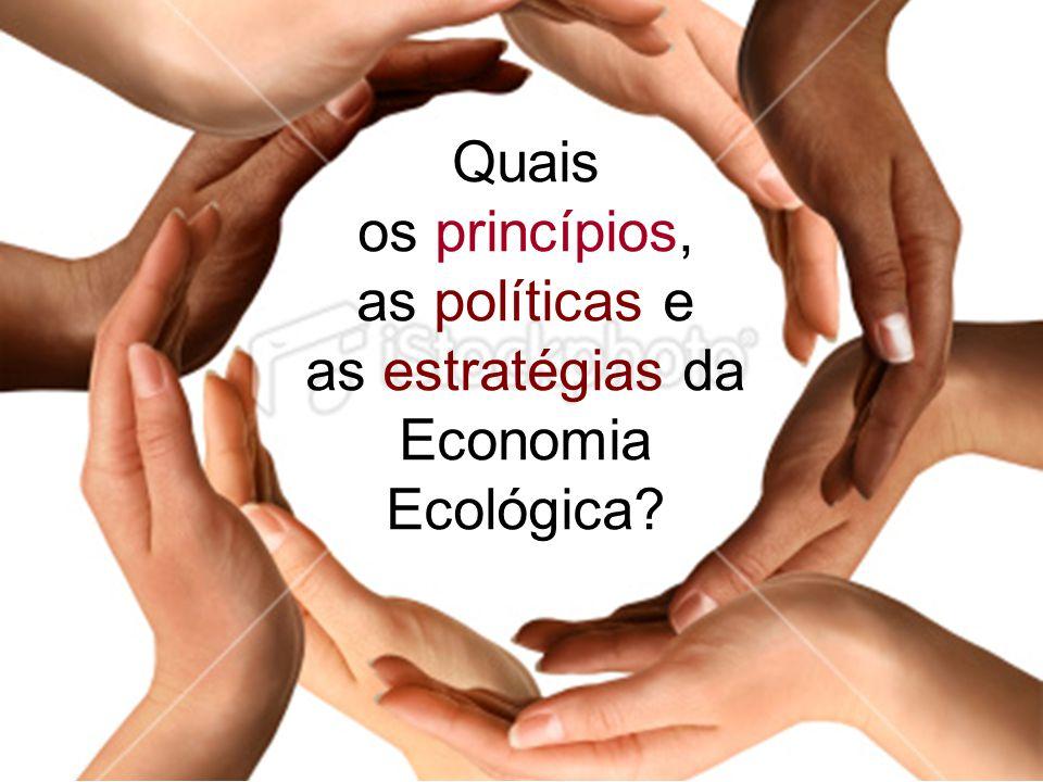2 Quais os princípios, as políticas e as estratégias da Economia Ecológica?