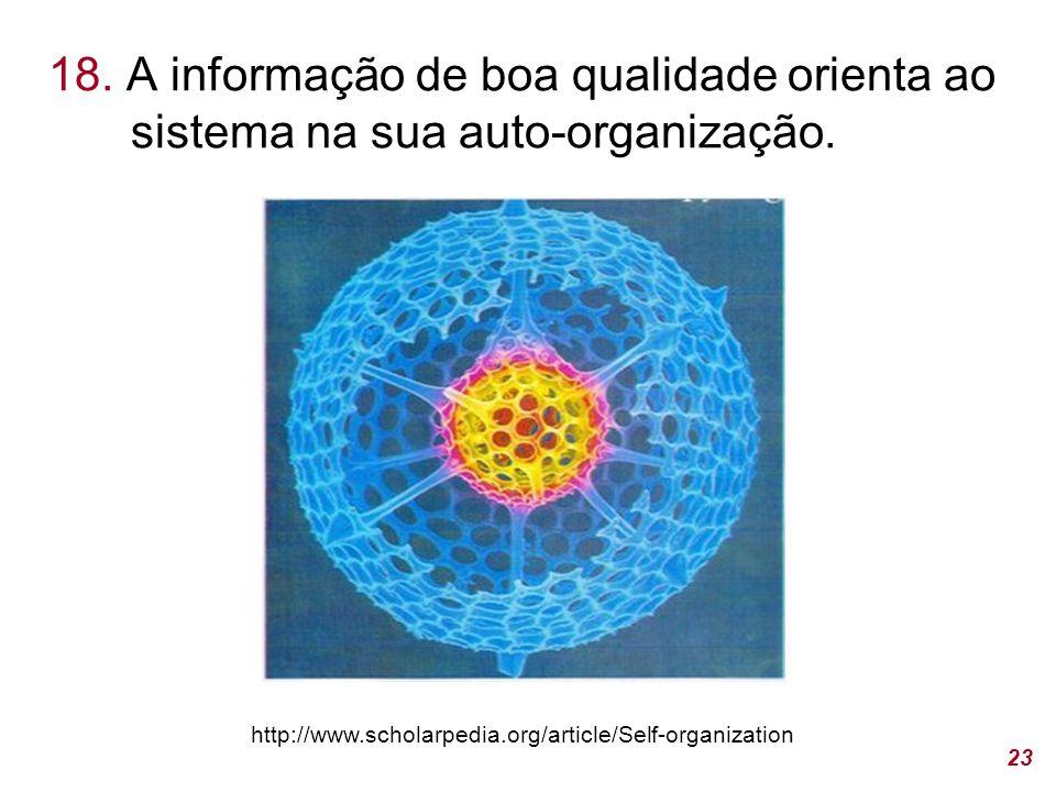 18.A informação de boa qualidade orienta ao sistema na sua auto-organização.