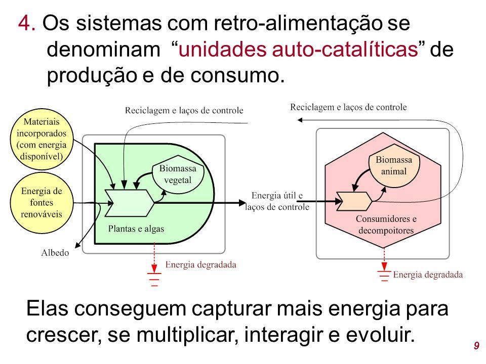 """4. Os sistemas com retro-alimentação se denominam """"unidades auto-catalíticas"""" de produção e de consumo. 9 Elas conseguem capturar mais energia para cr"""