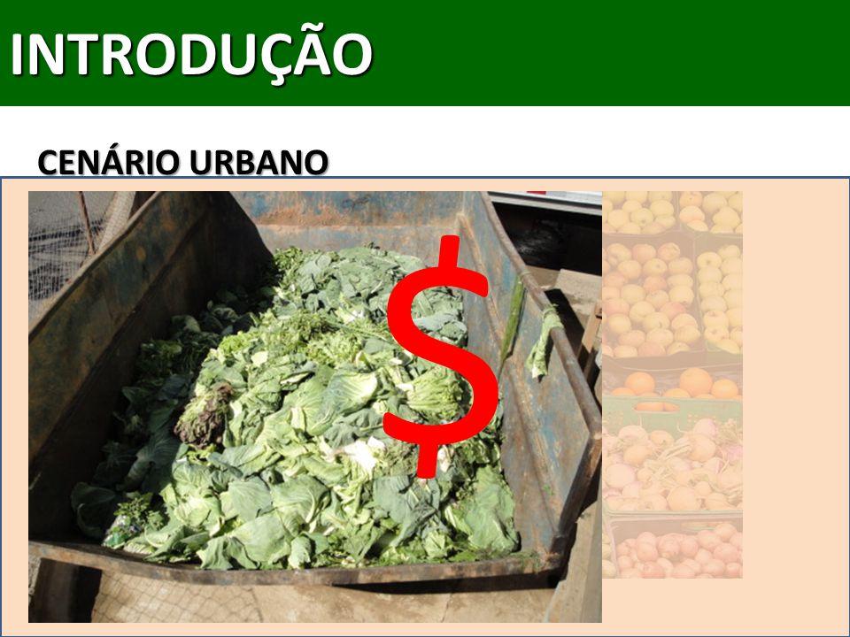 INTRODUÇÃO CENÁRIO URBANO $