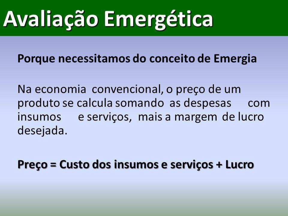 Porque necessitamos do conceito de Emergia Na economia convencional, o preço de um produto se calcula somando as despesascom insumos e serviços, mais a margem de lucro desejada.