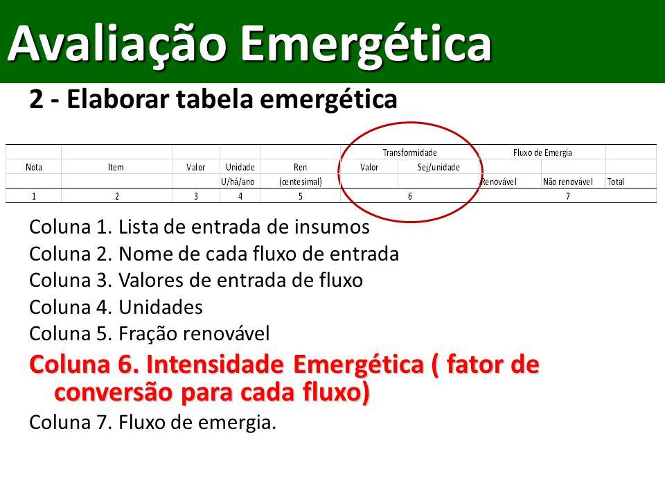 2 - Elaborar tabela emergética Coluna 1.Lista de entrada de insumos Coluna 2.