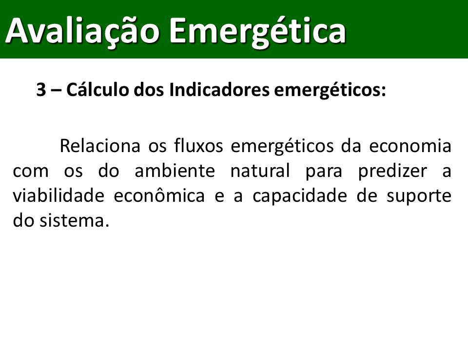 Relaciona os fluxos emergéticos da economia com os do ambiente natural para predizer a viabilidade econômica e a capacidade de suporte do sistema.