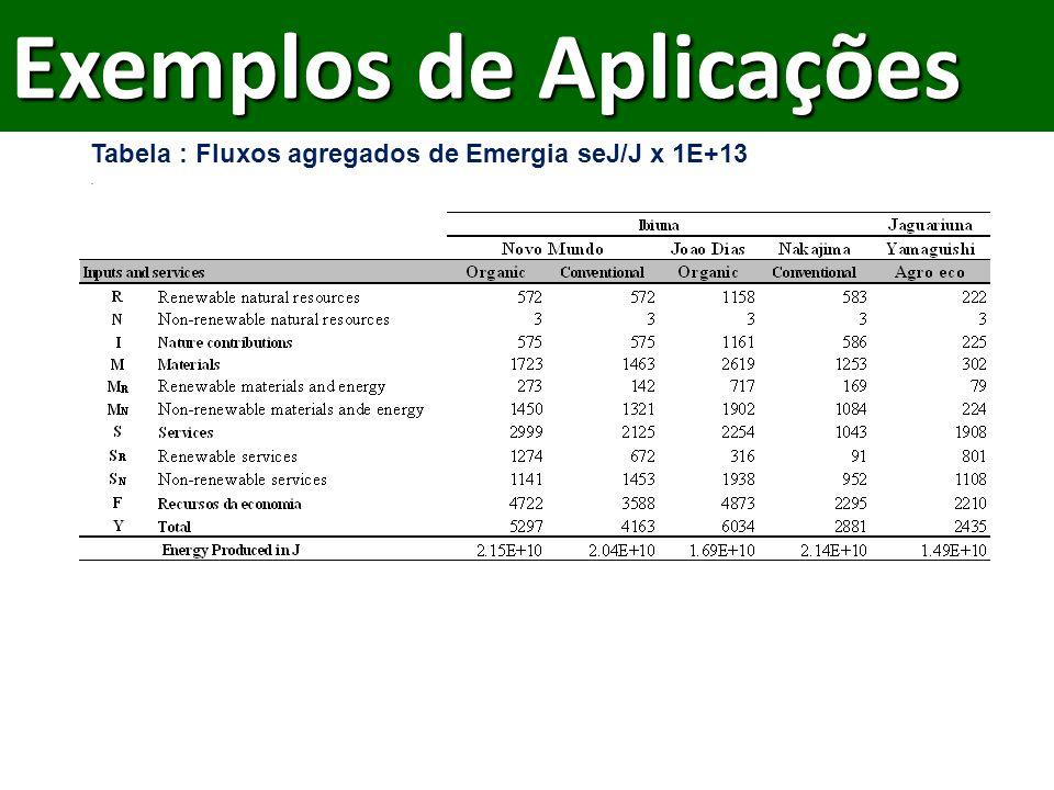 Tabela : Fluxos agregados de Emergia seJ/J x 1E+13.