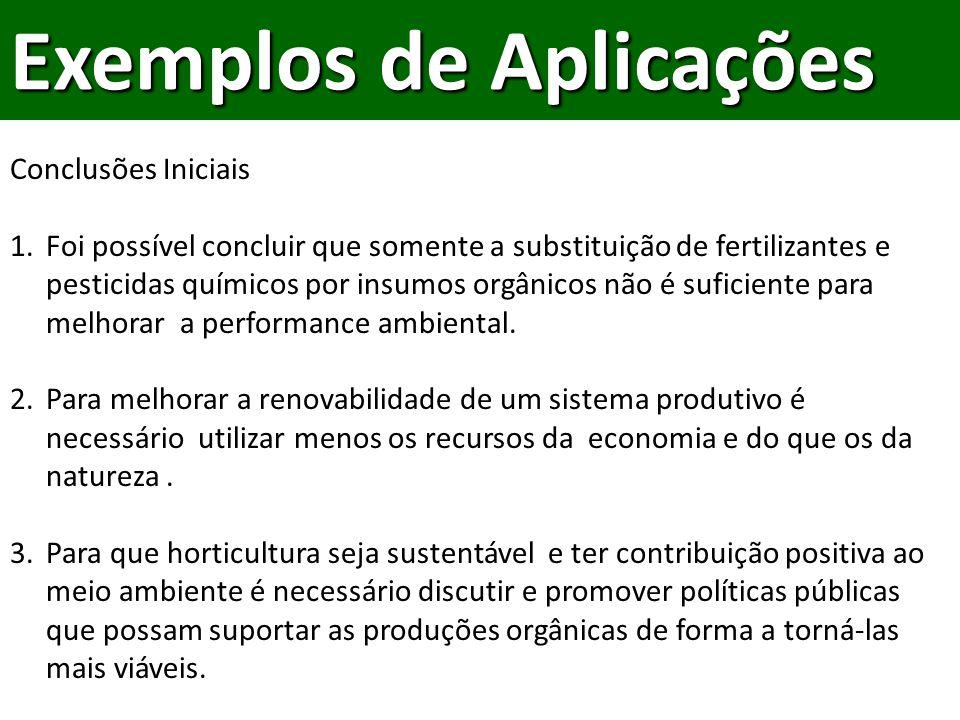 Conclusões Iniciais 1.Foi possível concluir que somente a substituição de fertilizantes e pesticidas químicos por insumos orgânicos não é suficiente para melhorar a performance ambiental.