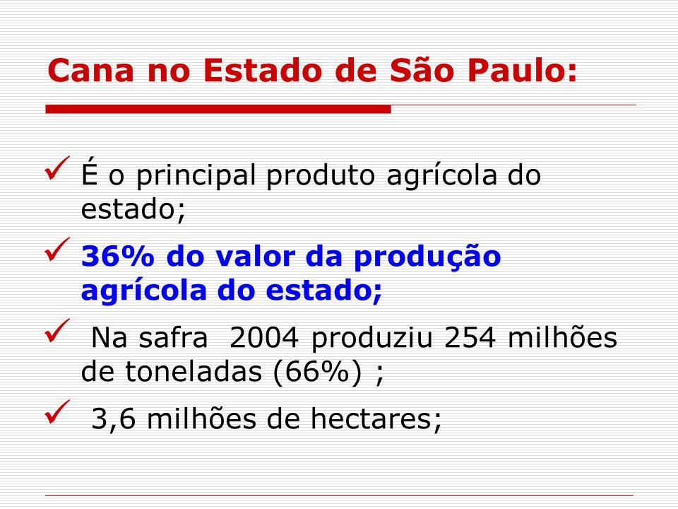 Cana no Estado de São Paulo: É o principal produto agrícola do estado; 36% do valor da produção agrícola do estado; Na safra 2004 produziu 254 milhões de toneladas (66%) ; 3,6 milhões de hectares;