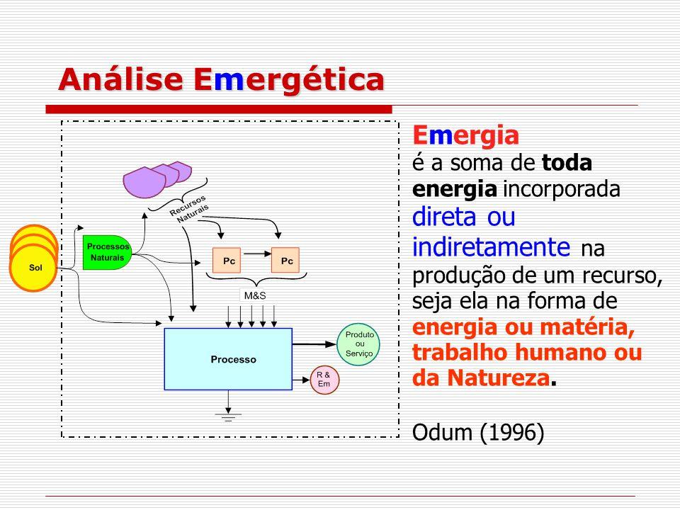 Análise Emergética Emergia é a soma de toda energia incorporada direta ou indiretamente na produção de um recurso, seja ela na forma de energia ou matéria, trabalho humano ou da Natureza.