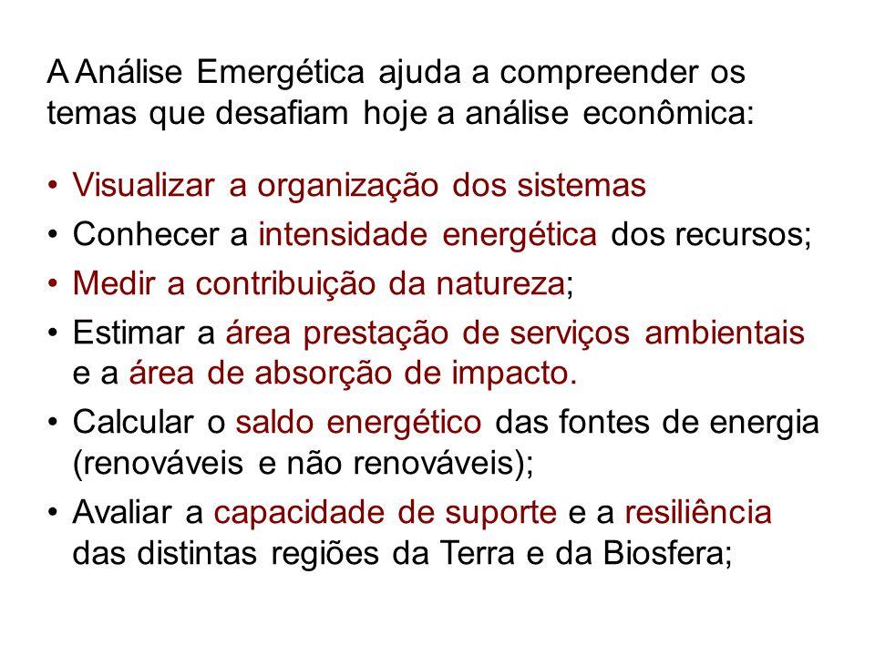 A Análise Emergética ajuda a compreender os temas que desafiam hoje a análise econômica: Visualizar a organização dos sistemas Conhecer a intensidade