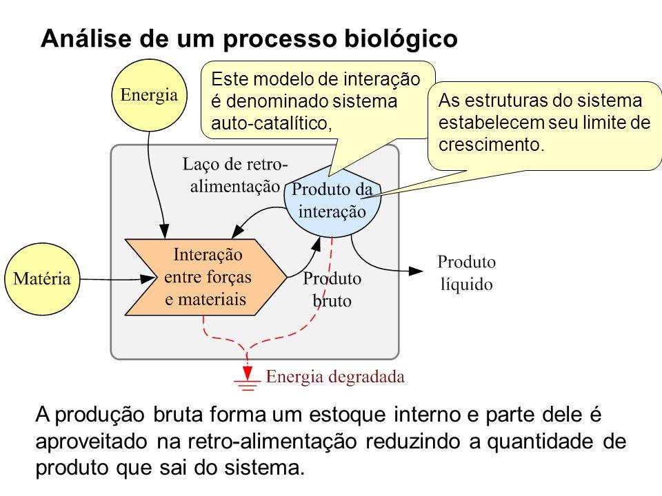 Análise de um processo biológico A produção bruta forma um estoque interno e parte dele é aproveitado na retro-alimentação reduzindo a quantidade de p