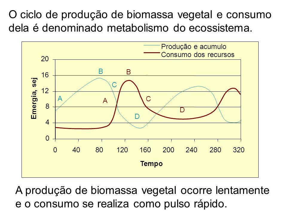 A produção de biomassa vegetal ocorre lentamente e o consumo se realiza como pulso rápido. O ciclo de produção de biomassa vegetal e consumo dela é de